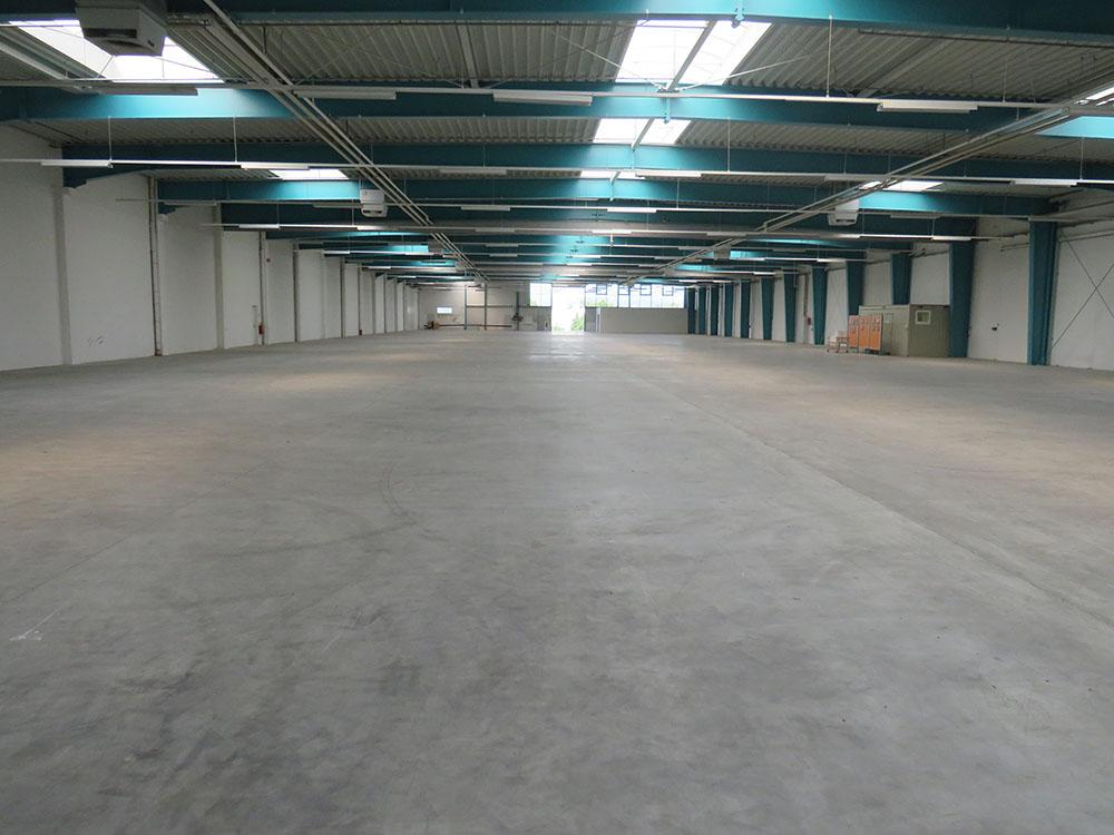 Prenneis-Immobilien-Frankenburg-Halle-2-10